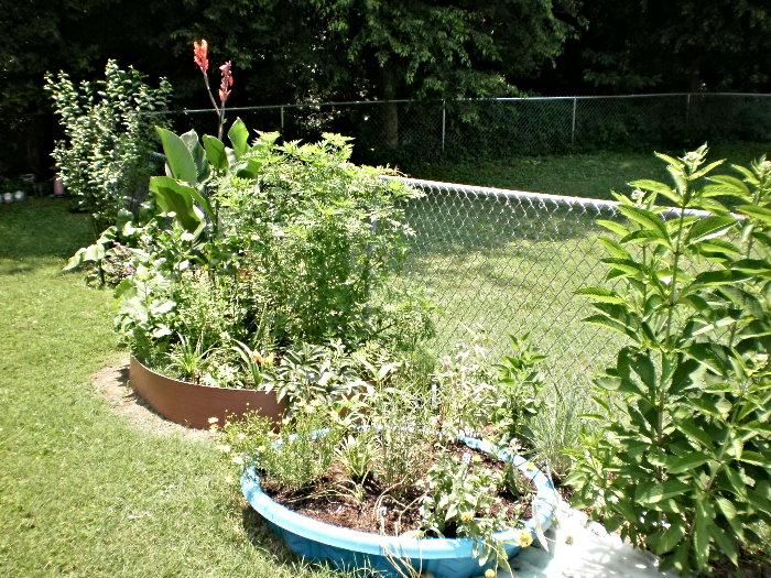 wading pool garden