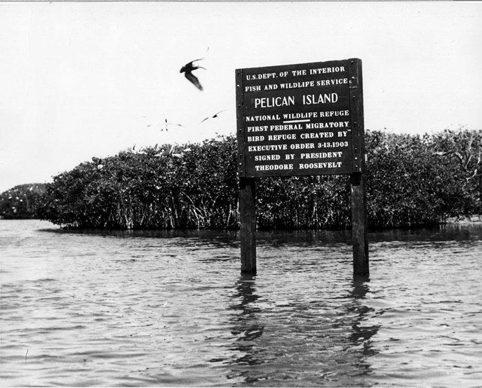 first migratory bird refuge