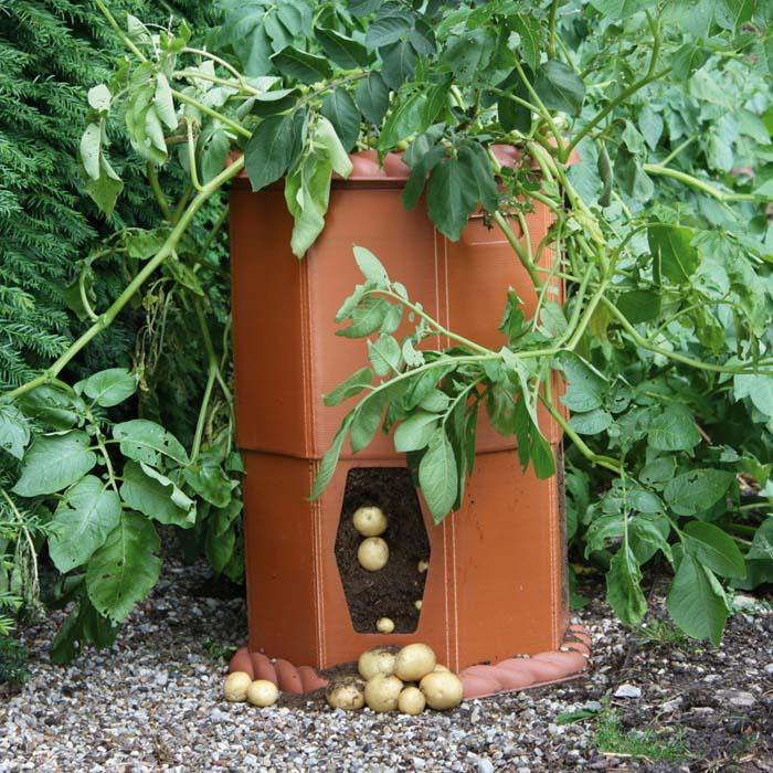 special potato growing container