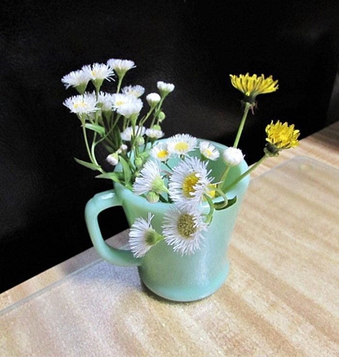 fleabane and dandelion bouquet