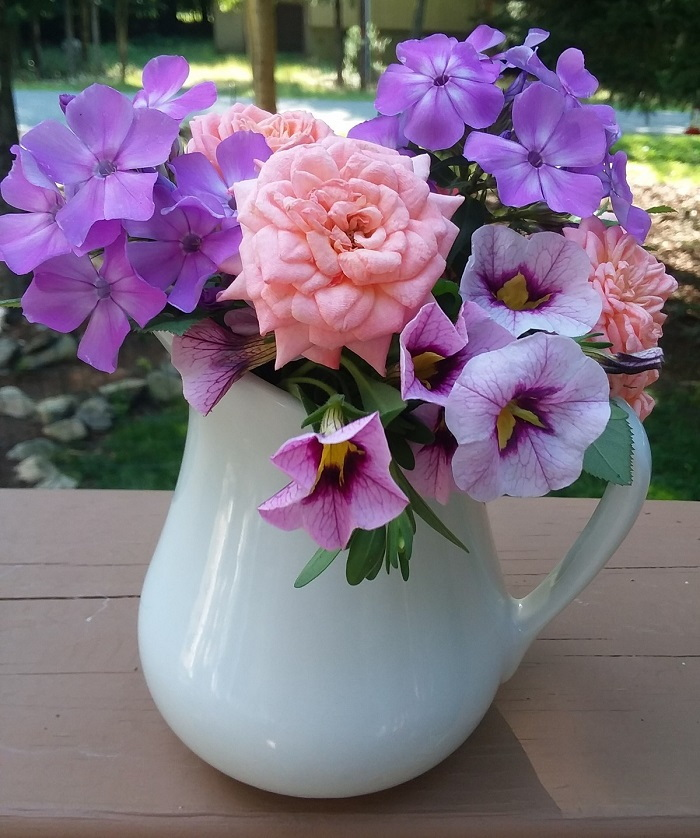 roses and phlox in a pitcher