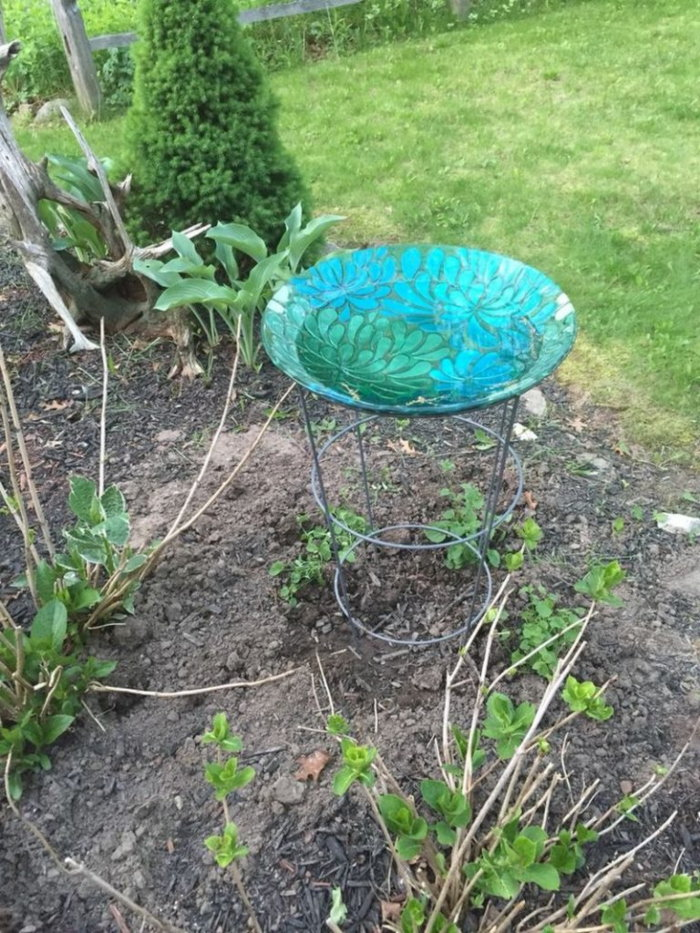 tomato cage holding a birdbath