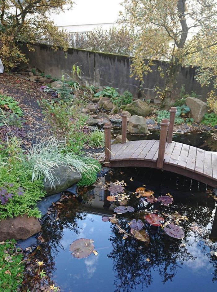 icelandic water garden