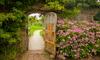 A garden gate.