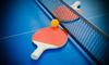 ping pong paddle laying near the net on a table
