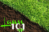 Your Ultimate Lawn Care Cheat Sheet