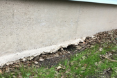 A house foundation with a hole at the base.
