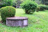 A septic tank in a yard.