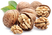 several walnuts, some cracked open