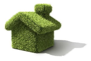 green grass house isolated
