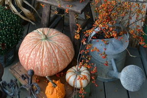 Fall front porch decor.