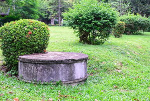 A septic tank in a lawn surrounded by shrubs.