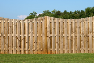 A scalloped wooden fence in a lush green backyard against a bright blue sky.