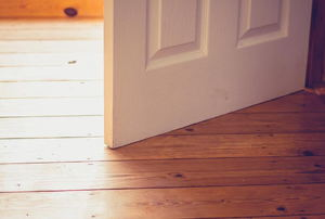 open white door and wood flooring