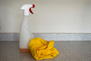 A bottle of cleaner and a clean, dry rag.