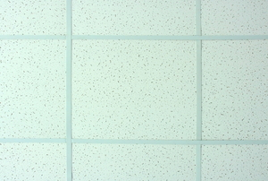 A close-up of some suspended ceiling panels.