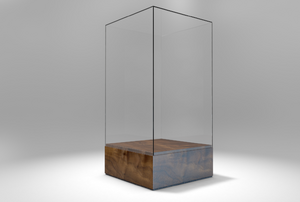 clear display case with wood base