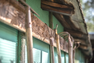 A grouping of yard tools hanging up on the outside of a shed.