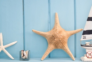 A blue wall and shelf with nautical decor including a small sailboat and starfish.