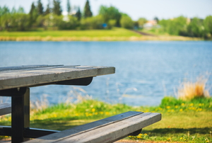 picnic table located next to a lake, surrounded by greenery