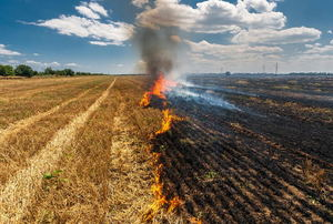 A field of dry crops burning.