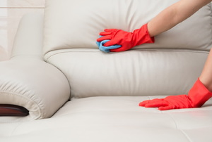 Someone cleaning white couch cushions.
