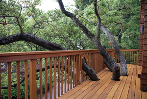 deck with railing surrounded by trees
