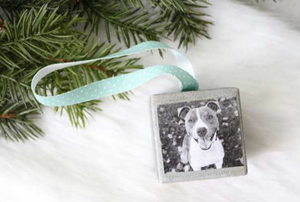 A wood Christmas ornament with a photo of a dog on it.
