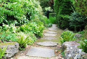 A stepping stone pathway.
