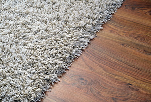 Shag carpet.