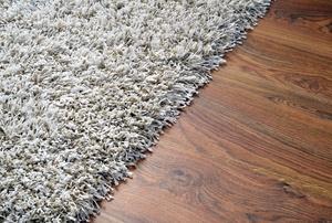 Shag carpet.