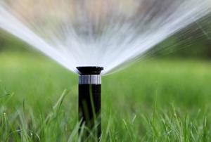 A lawn sprinkler.