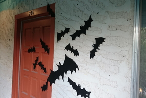 A colony of bats on a front door.