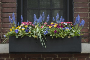 A window box.