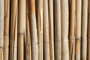 dry reed or bamboo fencing