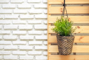 A hanging basket planter against a wood pallet and a white painted brick wall.