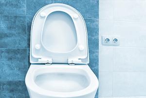 A toilet seat.