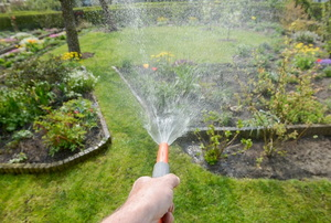 hosing lawn