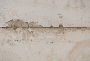 damaged wall from water