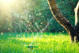 An impact sprinkler.