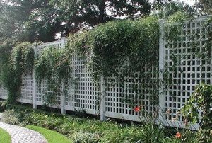 A plastic garden fence.