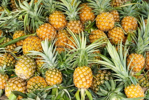 A bunch of pineapples.