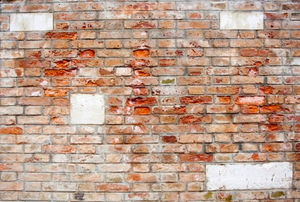 mildew basement wall