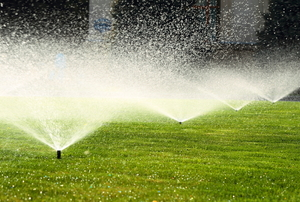 sprinklers watering a green lawn