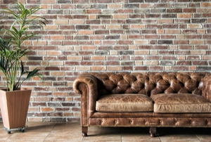 leather couch with houseplant and brick wall