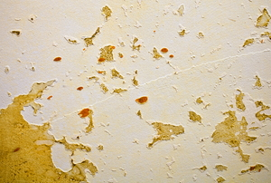 Glue residue in splotches on drywall.