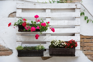 A pallet hung on a wall with flowers planted in it.