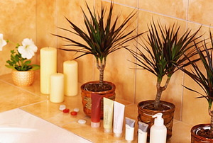 Decorating Around Garish Bathroom Tiles