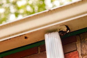 How to Test Your Gutters for Leaks