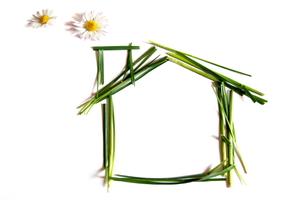 4 Green Roofing Options to Put Those Asphalt Shingles to Shame